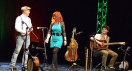 Woodwind and Steel - Irish Folk Band - Band Ed Ann Alex