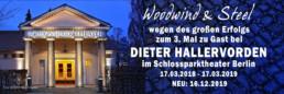 Berlin Hallervorden - Woodwind and Steel - Irish Folk Band