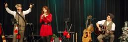 Woodwind & Steel - Irish Folk Band - Full Band Christmas Entertainment