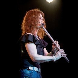 Ann Low Whistle Irish Folk Band Woodwind-Steel